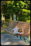 boy sleeping on park bench in Smithfield RI